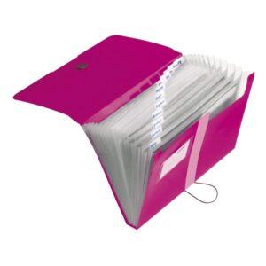 Lõõtsmapp A4 Easy Orga 12 vahega roosa 1/1